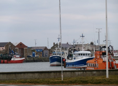 Howth: A Fisherman's Paradise