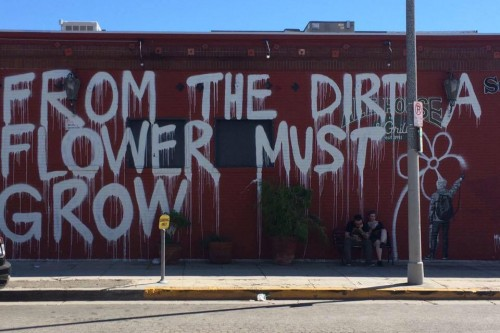 LA Street Art: From the Dirt a Flower Must Grow